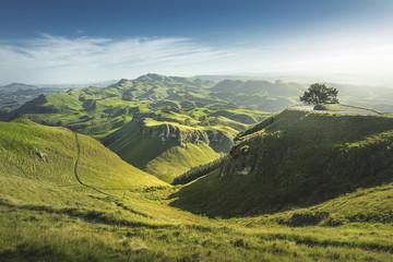 Green hills landscape view, location - Te Mata Peak, Hawke's Bay, Hasting, Napier, North Island,...
