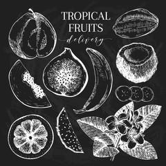 Vector hand drawn exotic fruits. Chalkboard style engraved smoothie bowl ingredients. Tropical sweet food delivery. Guava, fig, coconut, orange, banana, papaya, pitaya.