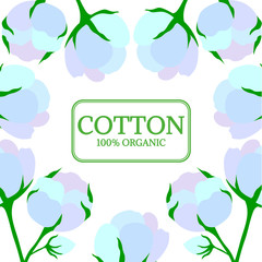 Organic cotton shop, bud, leaf, flower hand drawn template, background in sketch style. Square banner. For packaging cosmetic, label, banner, poster, wallpaper, wrapping.
