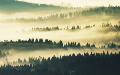 Poster Morning with fog Silhouettes of mountains. A misty autumn morning. Dawn in the Carpathians