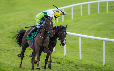Two race horses and jockeys battling for first place position in the race