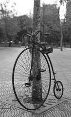 Retro bicycle with large front wheel in public park. Black and white tone.