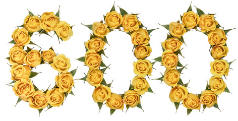 Arabic numeral 600, six hundred, from yellow flowers of rose, isolated on white background
