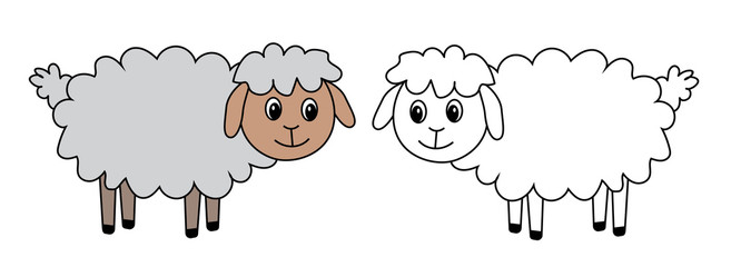 two sheep, set, vector, illustration
