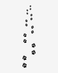 Black trail of dog, forward, vector illustration