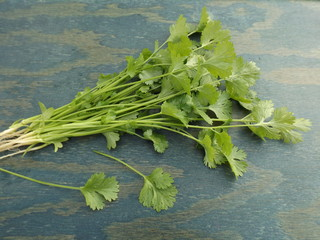 A bunch of fresh cilantro.