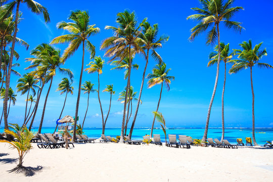 Beautiful beach from Barcelo hotel, Punta Cana