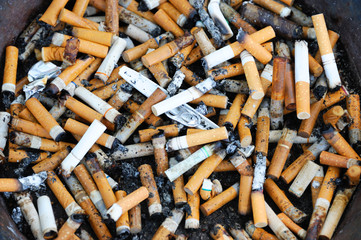 close up on cigarette butts
