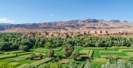 Beautiful lush green oasis with buildings and mountains at Todra Gorge, Morocco, North Africa