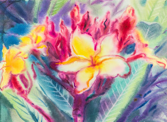 Abstract watercolor original painting purple,yellow color of Frangipani  flowers  and green leaves