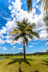 white clouds in blue sky above the golf field
