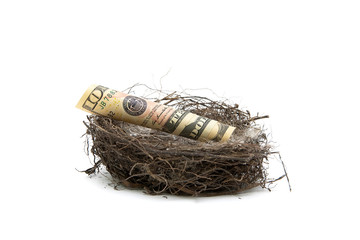 Money lies in a bird's nest on a white background.
