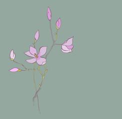 Refined magnolia branches