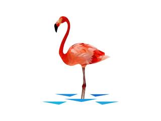 Vector flamingo