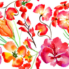 Wildflower flower pattern in a watercolor style isolated.