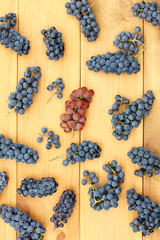 autumn harvest for future wine/ Flat layout with grapevines on a wooden table top view