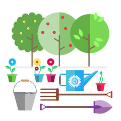 Garden. Fruit trees. Seedlings flowers in pots. Garden tools bucket, watering can, forks, shovel.