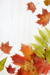 Background autumn season/ Flat layout of fallen leaves on the table top view