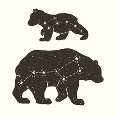 Constellation family