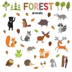 Set of forest animals made in flat style vector. Zoo cartoon collection for children books and posters.