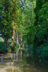 Beuatiful river landscape, river Spree in Germany