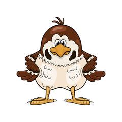 Funny cartoon sparrow  with wings akimbo