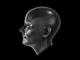 metal human head.3D RENDERING