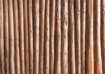 Eucalyptus wood background or wood texture