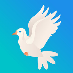 Vector beautiful white dove on blue sky background simple style peace symbol bird icon