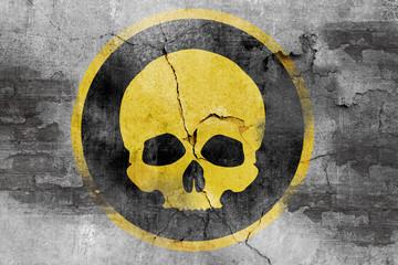 skull symbol on wall