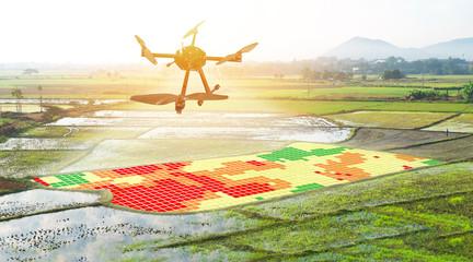 Smart agriculture , farm , precision farming concept. Drone and NIR images application screen used to create field health maps for normalize difference vegetation index in field rice with flare light.