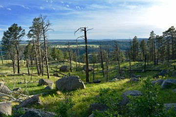 Landscape at Devils Tower National Monument Wyoming