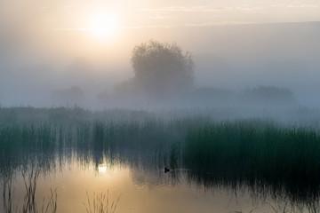 Wschód słońca nad jeziorem
