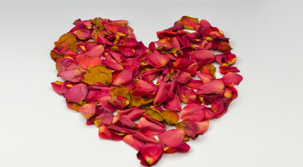 Heart shaped with red petals