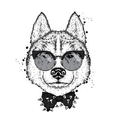 A beautiful dog with glasses and a tie. Vector illustration for a postcard or poster, print on clothes. Purebred puppy. Husky or wolf.