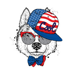 A beautiful dog in a cap, glasses and a tie. Vector illustration for a postcard or poster, print on clothes. Purebred puppy. Husky or wolf.