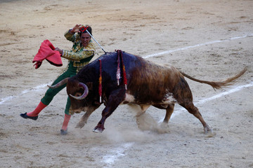 Spanish bullfighter Eduardo Davila Miura drives a sword into a bull at Madrid's Las Ventas bullring