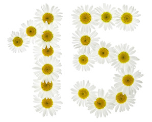 Arabic numeral 15, fifteen, from white flowers of chamomile, isolated on white background