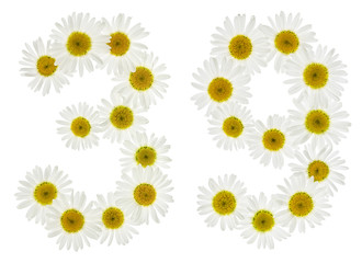 Arabic numeral 39, thirty nine, from white flowers of chamomile, isolated on white background