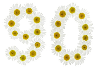 Arabic numeral 90, ninety, from white flowers of chamomile, isolated on white background