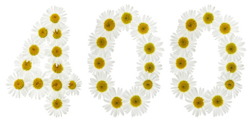 Arabic numeral 400, four hundred, from white flowers of chamomile, isolated on white background