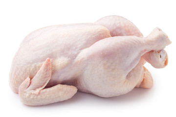 Raw fresh chicken, clipping path, on white background, isolated