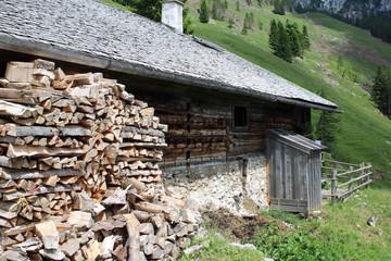 Brennholz an der Hütte