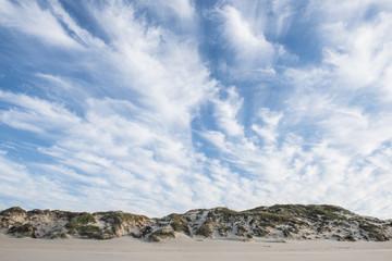 Coastal dunefields