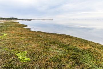 Salt Marshes on the Heuningnes River Estuary
