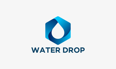 3D design Water Drop Logo template designs, vector illustration