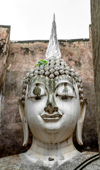 Sprout of Bodhi tree grows on Buddha image's head at Wat Si Chum, Sukhothai, Thailand