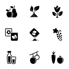 Set of simple icons on a theme Food, natural, eco-friendly, grown, fruits, vegetables, vector, set. White background