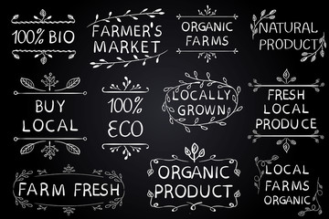 Set of VECTOR typographic elements on chalkboard. Farmers market, farm fresh eco food on white background. Green lines.