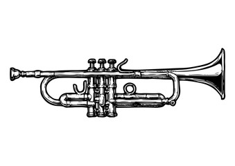illustration of trumpet